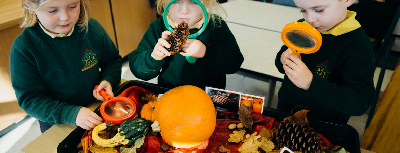 Petersfield-Infants-School-Context-Films-Photo-Selects-November-2020-06557